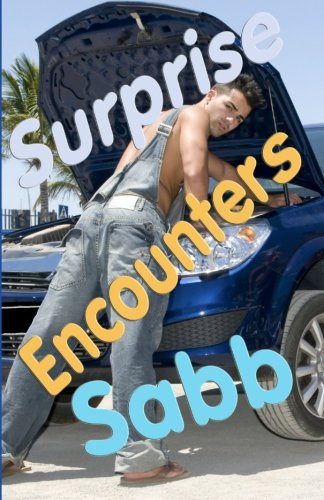 9781925190533: Surprise Encounters: A Gay Erotica Anthology