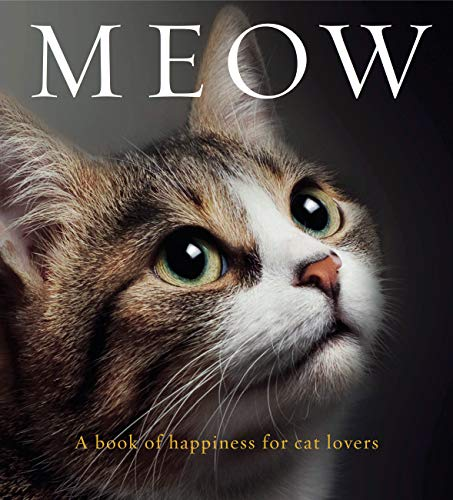 9781925335088: Meow: A book of happiness for cat lovers