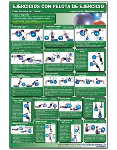 9781926534220: Ejercicios con pelota de ejercicio - Parte superior del cuerpo - Cartel - Body Ball Exercises - Upper body/Lower Body (Spanish Edition) CBBUL-SP (Poster)