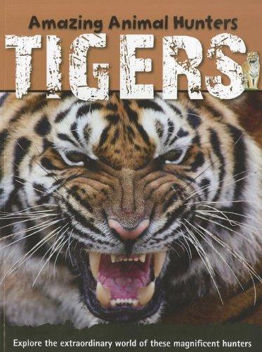 9781926722535: Tigers (Amazing Animal Hunters)