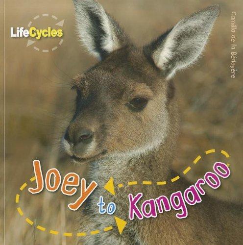 9781926853383: Joey to Kangaroo (Life Cycles (QEB Publishing))