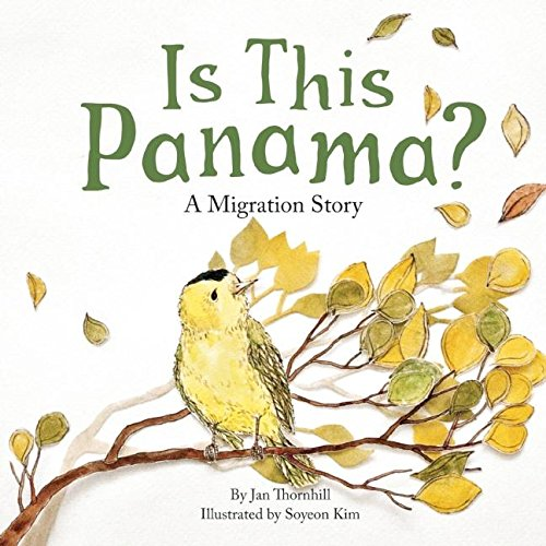 Is This Panama?: A Migration Story: Thornhill, Jan