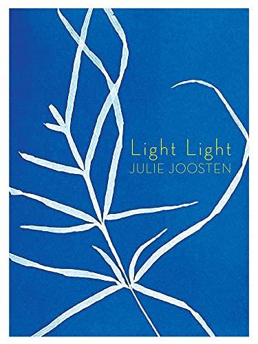 Light Light (Book Thug Tradebooks): Julie Joosten