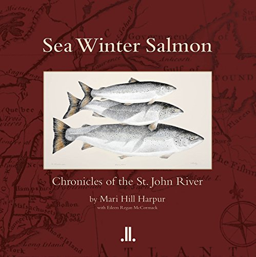 Sea Winter Salmon: Chronicles of the St. John River (Paperback): Mari Hill Harpur