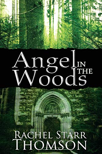 9781927658192: Angel in the Woods