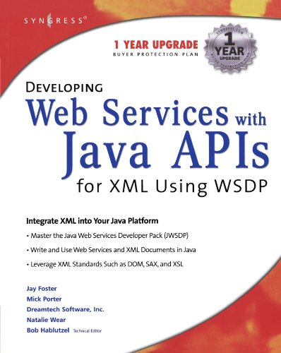 9781928994855: Developing Web Services with Java APIs for XML Using WSDP