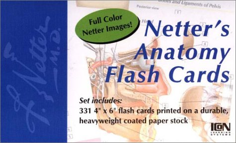 9781929007080: Netter's Anatomy Flash Cards