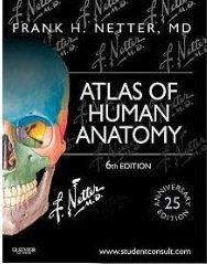 9781929007172: Netter's Atlas Human Anatomy