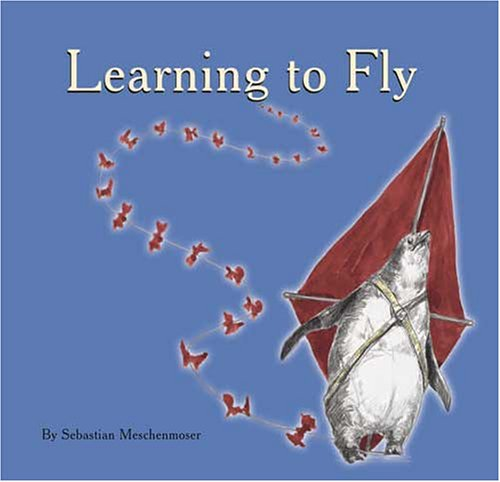 Learning to Fly: Sebastian Meschenmoser