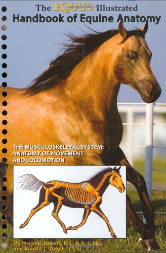 9781929164332: The Equus Illustrated Handbook of Equine Anatomy, Volume 1, The Musculoskeletal System: The Anatomy of Movement and Locomotion