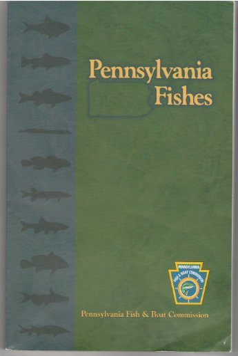 Pennsylvania fishes: Linda Steiner