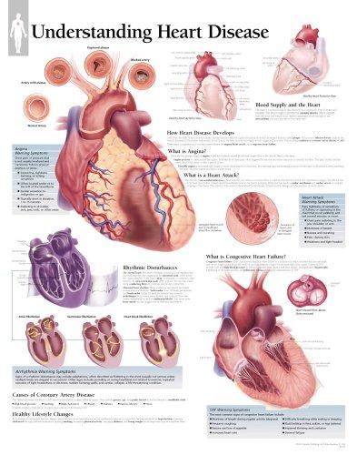 Understanding Heart Disease: Scientific Publishing