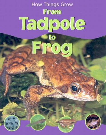 9781930643857: From Tadpole to Frog (How Things Grow)