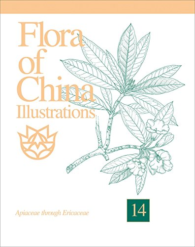 9781930723511: Flora of China, Illustrations Volume 14, Apiaceae through Ericaceae