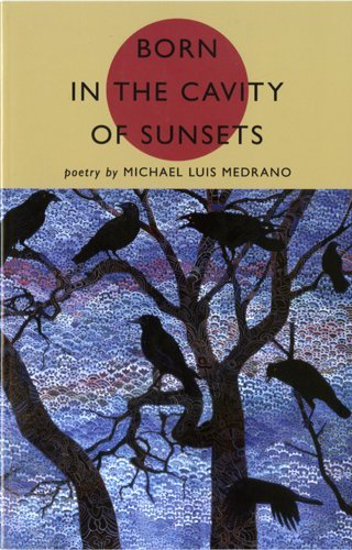Born in the Cavity of Sunsets: Michael Luis Medrano
