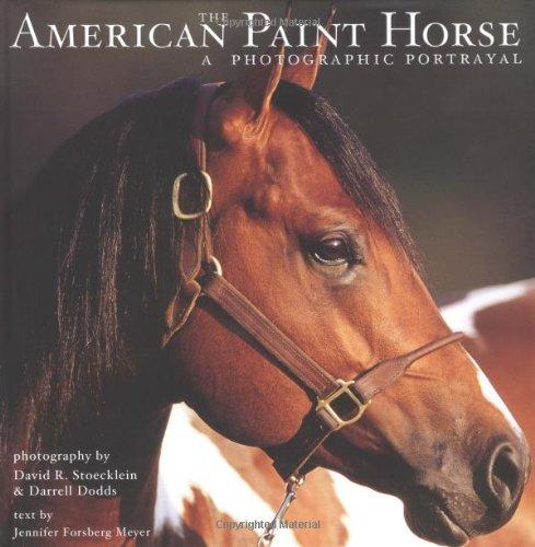 THE AMERICAN PAINT HORSE: A Photographic Portrayal.: Meyer, Jennifer Forsberg.