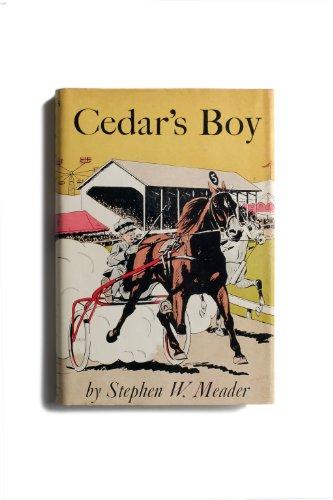 9781931177566: Cedar's Boy