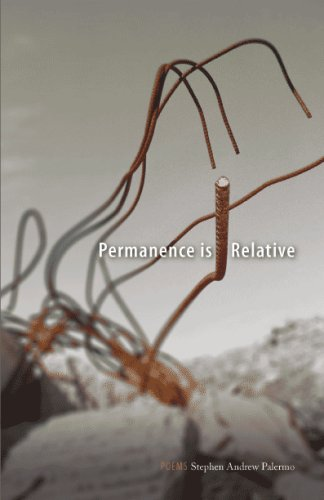 Permanence is Relative: Stephen Andrew Palermo
