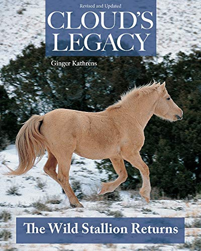 9781931993128: Cloud's Legacy: The Wild Stallion Returns
