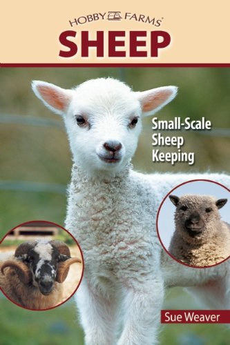 Sheep: Small-Scale Sheep Keeping For Pleasure And Profit (Hobby Farms): Weaver, Sue