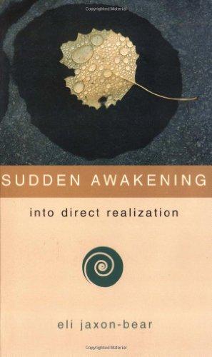 9781932073119: Sudden Awakening: Into Direct Realization
