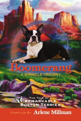 Boomerang - a Miracle Trilogy : The: Arlene Millman