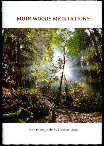 9781932519020: Muir Woods Miditations (Forest Meditations)