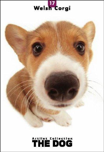 9781932617160: Welsh Corgi (Artlist Collection THE DOG Postcard Booklet)