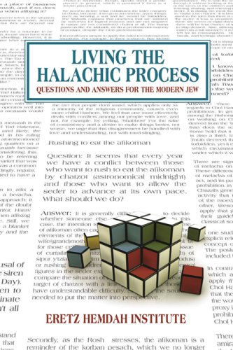 9781932687880: Living the Halachic Process: Questions and Answers for the Modern Jew