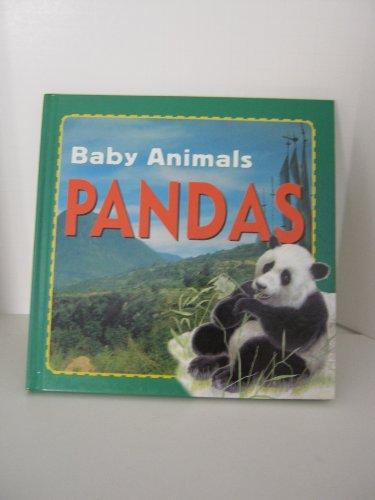 Pandas (Wild Baby Animals (Stargazer)): Petty, Kate