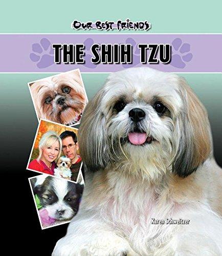 Shih Tzu (Hardback): Karen Schweitzer