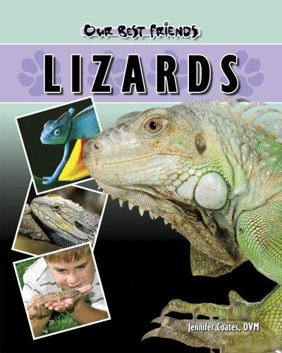 9781932904390: Lizards (Our Best Friends)