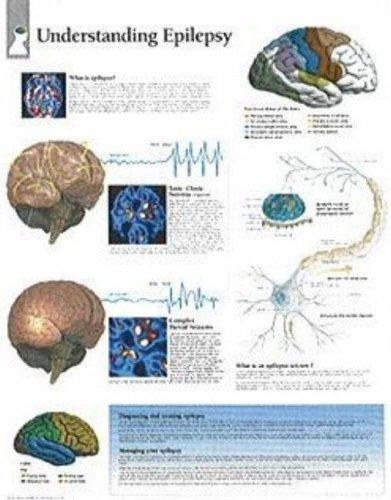 Understanding Epilepsy: Scientific Publishing