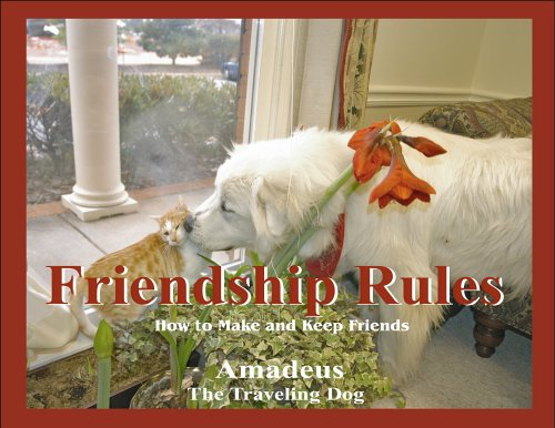 Friendship Rules : How to Make and: Amadeus, the Traveling