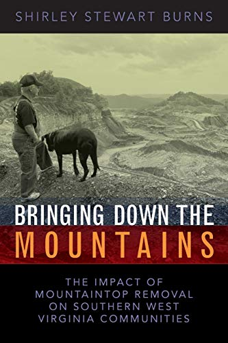 9781933202174: Bringing Down the Mountains: The Impact of Mountaintop Removal on Southern West Virginia Communities