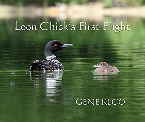 Loon Chick's First Flight: Gene Klco