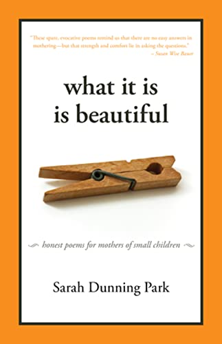 9781933339597: What It Is Is Beautiful