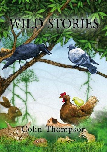 9781933605883: Wild Stories