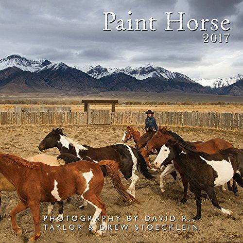 9781933790916: 2017 Paint Horse Calendar