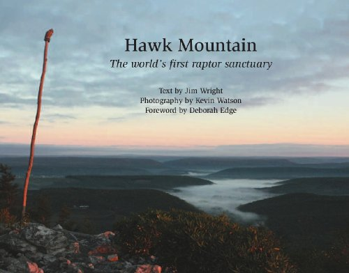 9781933822129: Hawk Mountain: The World's First Raptor Sanctuary