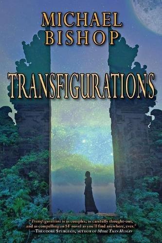 9781933846705: Transfigurations