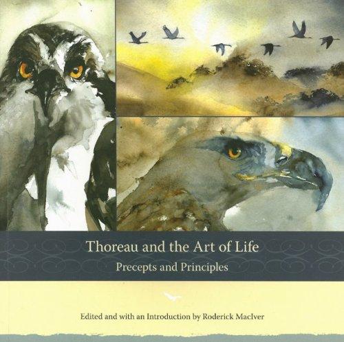 9781933937137: Thoreau and the Art of Life: Precepts and Principles