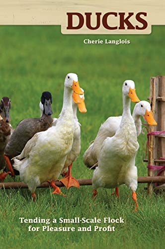 9781933958163: Ducks: Tending a Small-Scale Flock for Pleasure and Profit (Hobby Farm)