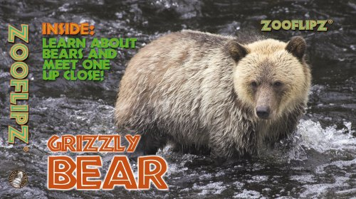 Animal Flipbooks (Grizzly Bear): Jody Grant-Gray