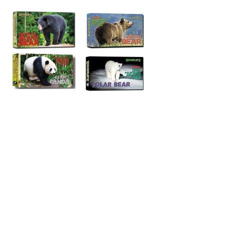 9781934095515: Flipbooks - Bears (Set of 4)