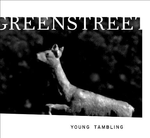 9781934103357: Young Tambling (New Series)