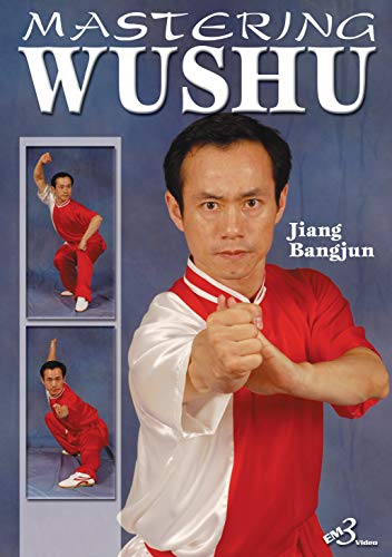 9781934347317: MASTERING WUSHU