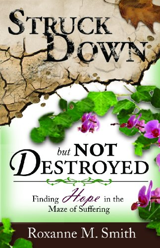 9781934363171: Struck Down; But Not Destroyed: Finding Hope in the Maze of Suffering