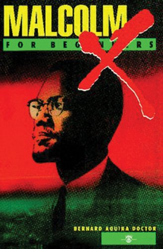 9781934389041: Malcolm X For Beginners