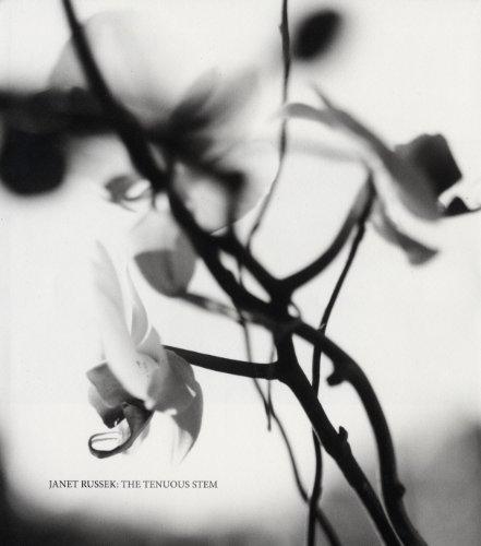 9781934435700: Janet Russek: The Tenuous Stem